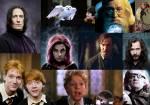 Wenn du eine der folgenden Personen die in den Büchern verstarben zurück ins Leben zurück holen könntest, für welche würdest du dich entscheiden