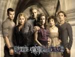 Wie wichtig bist du in Twilight?