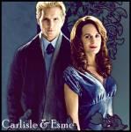 Wo finden die Flitterwochen von Bella & Edward statt?