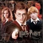 Bist du im selben Jahrgang wie Harry Potter & co?