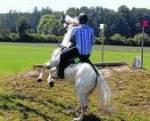 Was wäre wenn du vom Pferd fällst?