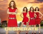 Wie heißen die vier Hauptcharaktere von Desperate Housewives?