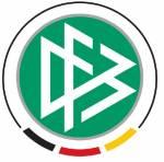 Wie viele Ligen hat der DFB?