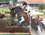 Jedes Pferd kann springen?