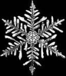 Schnee essen kann genügend Wasser ergeben, um dem Austrocknen Ihren Körper zu verhindern?