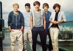 Wie heißen die Jungs von One Direction?