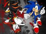 Welche Beziehung steht zwischen Sonic und Shadow?