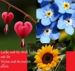 Welche Blume ist deine liebste?