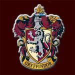 Dein Haus in Hogwarts!
