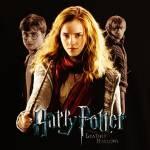Gehörst du zur dunklen oder zur guten Seite- Harry Potter Quiz