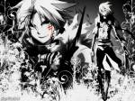 D. Gray-man Quiz!