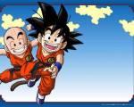 Mit wem hat Son-Goku bei Muten Roshi trainiert?