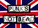 Emo, Metaller, Punk...?