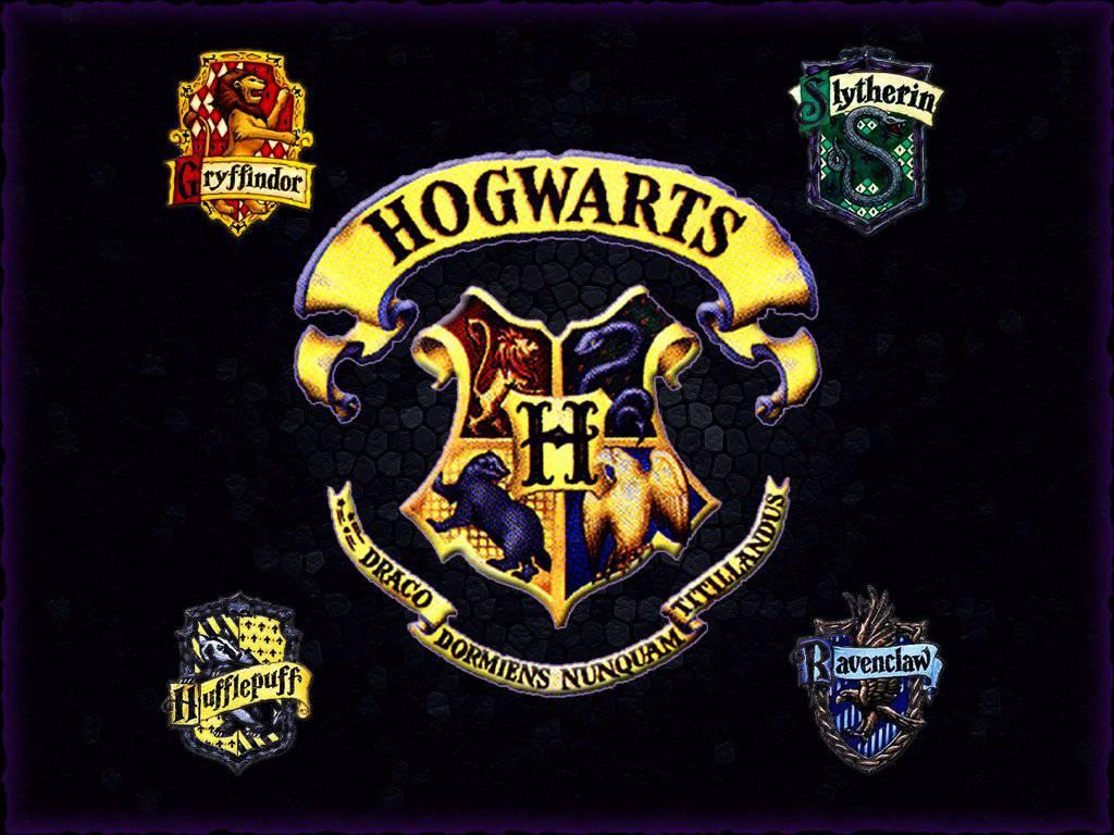 In Welches Haus In Hogwarts Komme Ich