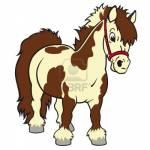 *Pferde: Farben