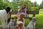 Warum wird Ally Hundesitterin?