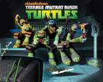 Teenage Mutant Ninja Turtles 2012 Quiz (für Experten)