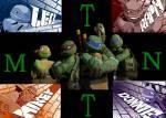 Welche Turtles sind verliebt?