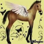 Auf Howrse gibt es Pegasusfohlen.