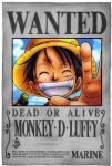 Wie hoch ist das Kopfgeld von Monkey d. Ruffy in der neuen Welt?