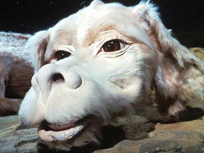 Dog Dragon Neverending Story Name