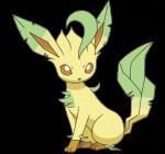 Wer ist das Pokémon auf diesem Bild?