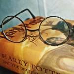 Du frühstückst gerade als eine Eule ans Fenster klopft. Du öffnest das Fenster und sie gibt dir einen Brief aus Hogwarts. Du...