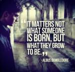 Harry Potter – Persönlichkeits-Test – In welches Haus würdest du kommen und was sagt das über dich aus?