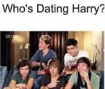 Harry und Louis sind schwul und offiziell zusammen?