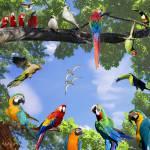 Was weißt du über Papageien?