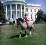 Wie hieß das Pony, das sie von Vizepräsident Johnson bekam?