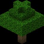 Bäume können 3-17 Blöcke hoch werden.