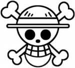 Was ist der Begriff für die Totenkopfflagge?