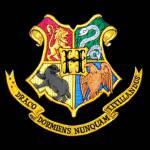 In Hogwarts angekommen werdet ihr in die große Halle geführt und eure Namen werden aufgerufen. Als McGonagall deinen Namen aufruft gehst du mit zitt