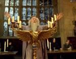 Von wem wird Dumbledore umgebracht?