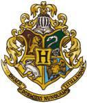 Welcher Hogwarts Professor für VgddK bist du?