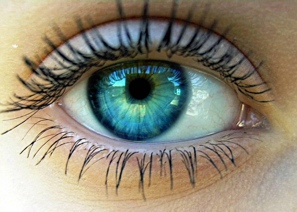 Welche Augenfarbe Passt Wirklich Zu Dir