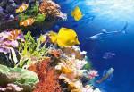 Magst du Unterwassertiere?