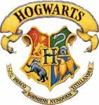 Wer ist dein Harry Potter Lover?