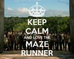 The Maze Runner-Story