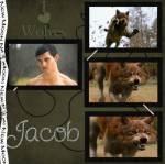 Wann stellt sich heraus dass Jacob ein Werwolf ist?