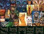 DIE HIERARCHIE DES SMARAGDSCLANSAnführerin: Smaragdstern( mittelgroße, hübsche, schlanke, elegante, feuerrote Kätzin mit smaragdgrünen Augen und