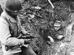Bist du ein Experte des Zweiten Weltkriegs?