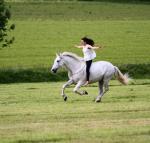 Wo hast du dein Pferd gekauft?