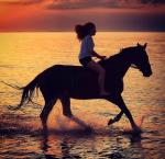 Schön, dass du mitgemacht hast! Letzte Frage: Warst du schon mit deinem Pferd im Urlaub? Wo?