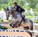Wann/wie oft reitest du dein Pferd/deine Pferde?