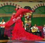 Der Flamenco ist ein Tanz, der zwischen schnellen Fußbewegungen und langsamen Passagen wechselt. Er wurde ursprünglich von den Roma nach Spanien geb