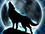 HIERACHIE MAC DUNCAN Clanführer: MAIRIE-lohfarbene Wölfin mit grünen Augen Obea: Feuergrasrudel: LORD: DRACHENBLUT-schwarzer Wolf mit braunen Augen