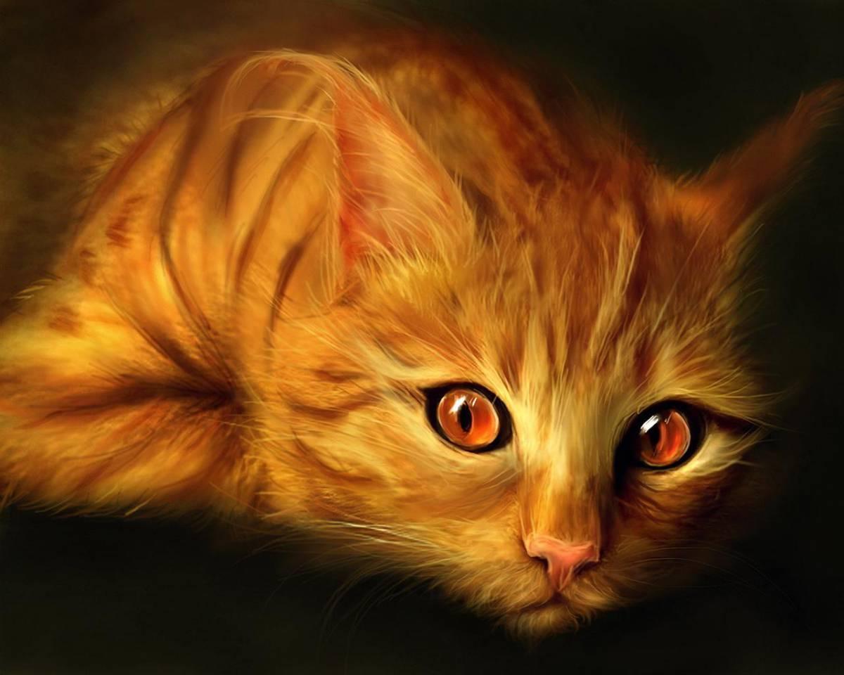 chatte rousse baise manga