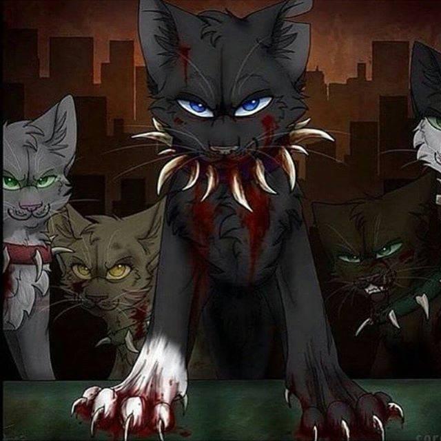 Zu Viel Warriorcats